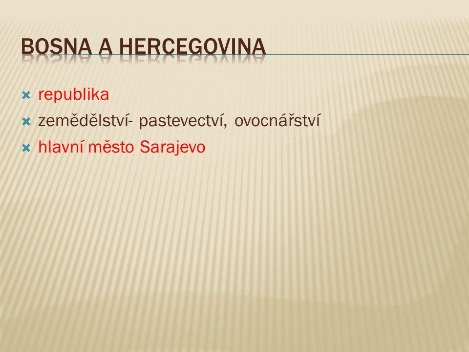  republika  zemědělství- pastevectví, ovocnářství  hlavní město Sarajevo