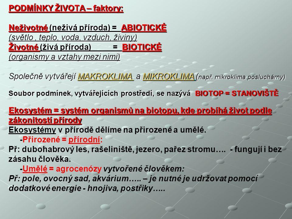 KONEC DĚKUJI ZA POZORNOST, PŘEJI PŘÍJEMNÝ DEN Helena Jedličková Helena Jedličková