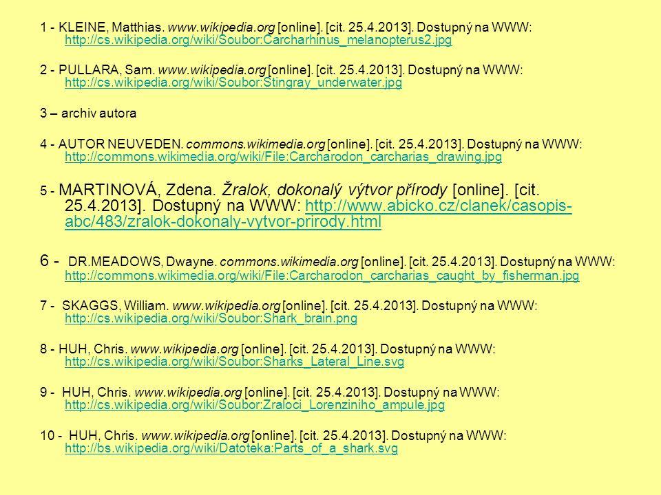 1 - KLEINE, Matthias. www.wikipedia.org [online].