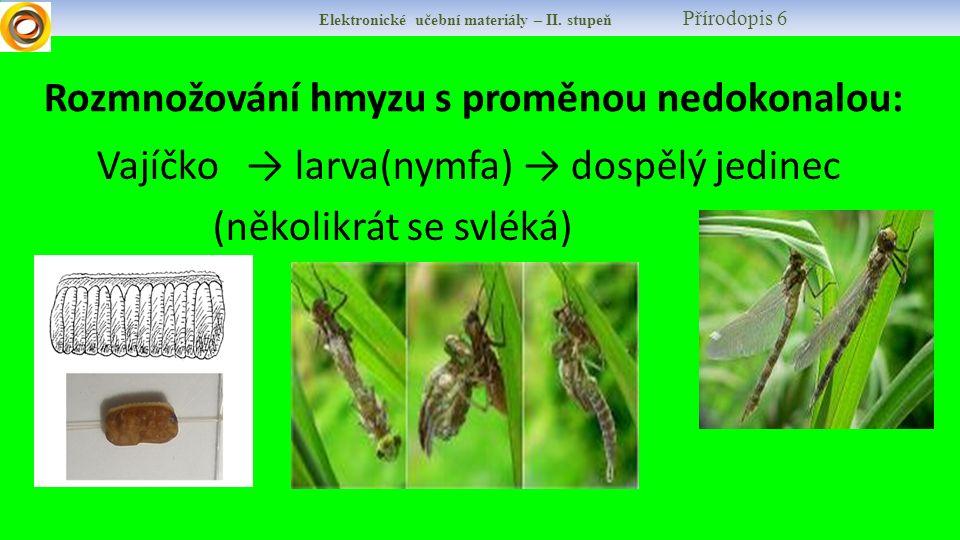 Elektronické učební materiály – II. stupeň Přírodopis 6 Rozmnožování hmyzu s proměnou nedokonalou: Vajíčko → larva(nymfa) → dospělý jedinec (několikrá