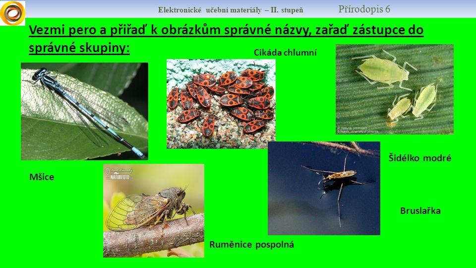 Elektronické učební materiály – II.