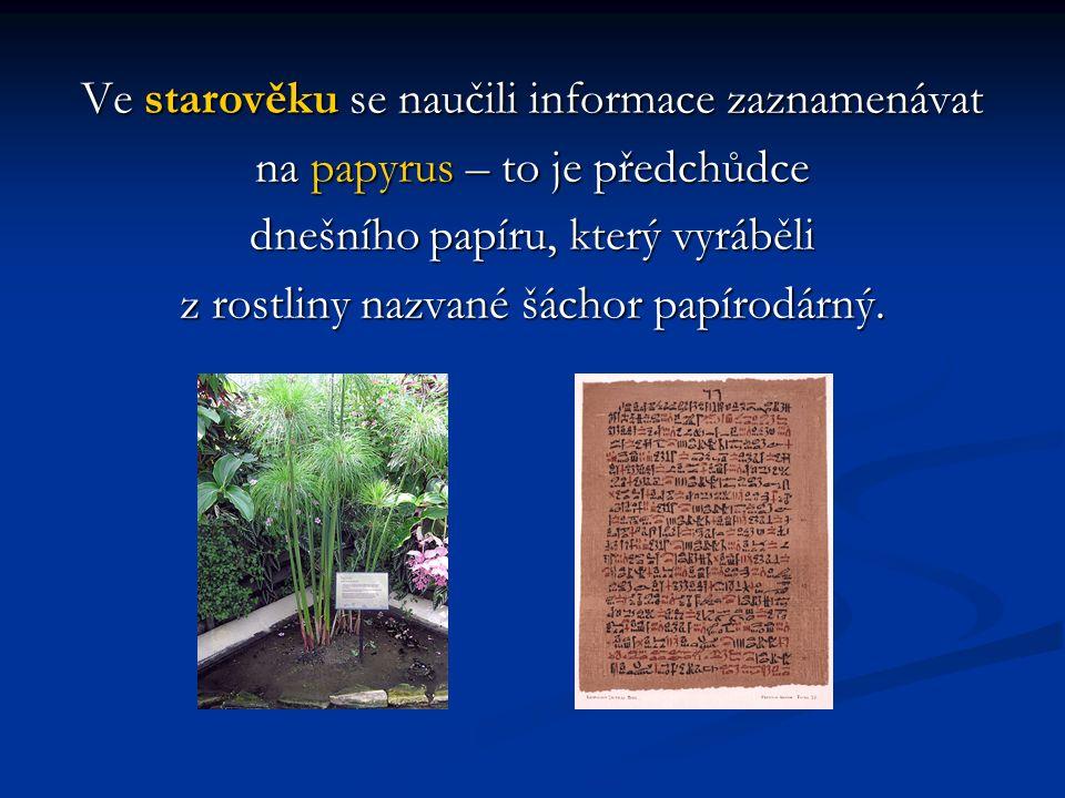 Ve starověku se naučili informace zaznamenávat na papyrus – to je předchůdce dnešního papíru, který vyráběli z rostliny nazvané šáchor papírodárný.