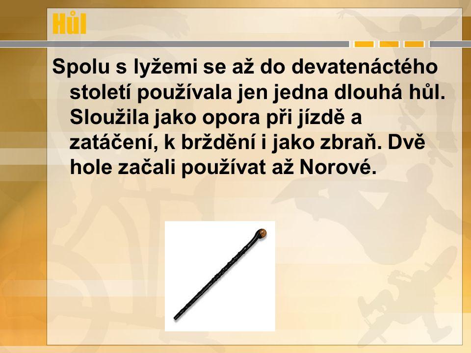 Hůl Spolu s lyžemi se až do devatenáctého století používala jen jedna dlouhá hůl. Sloužila jako opora při jízdě a zatáčení, k brždění i jako zbraň. Dv
