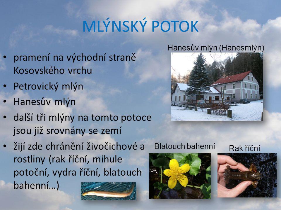 MLÝNSKÝ POTOK pramení na východní straně Kosovského vrchu Petrovický mlýn Hanesův mlýn další tři mlýny na tomto potoce jsou již srovnány se zemí žijí