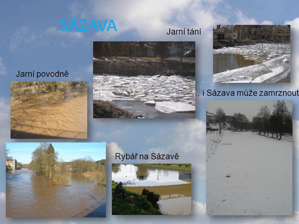 SÁZAVA … i Sázava může zamrznout… Jarní tání Jarní povodně Rybář na Sázavě
