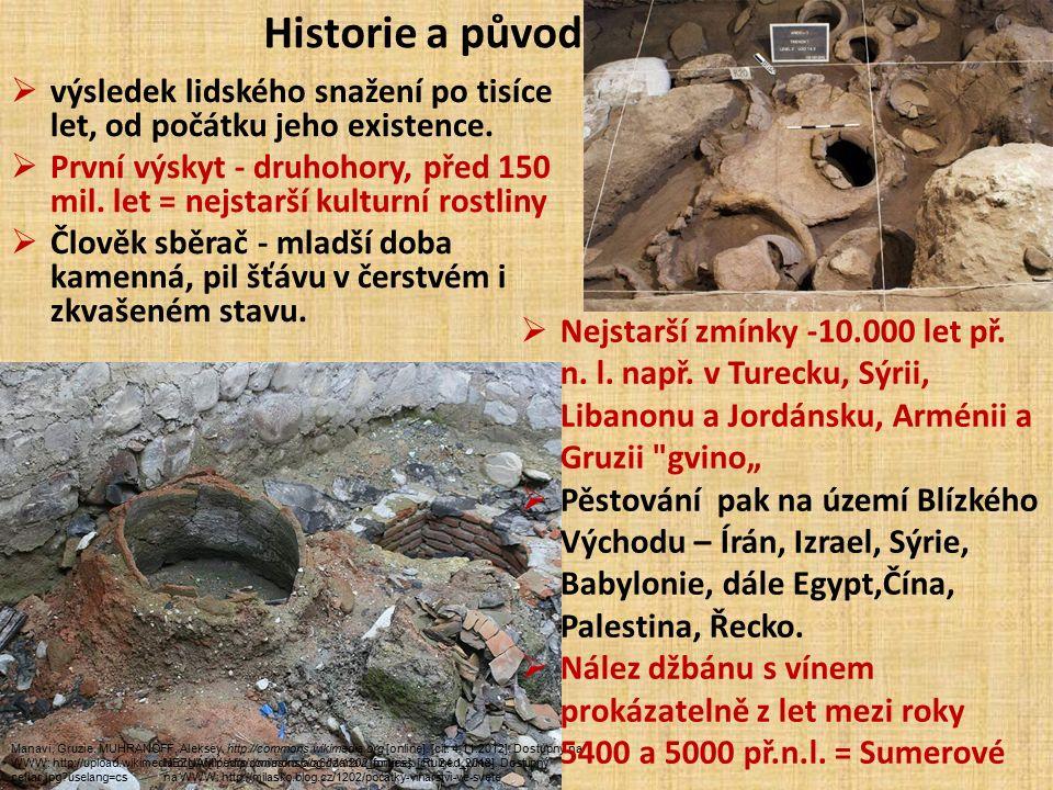 Historie a původ  výsledek lidského snažení po tisíce let, od počátku jeho existence.  První výskyt - druhohory, před 150 mil. let = nejstarší kultu