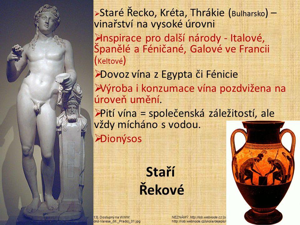 NEZNÁMÝ. http://iob.webnode.cz [online]. [cit. 24.1.2013]. Dostupný na WWW: http://iob.webnode.cz/skola/dejepis/ucebni-materialy-6-rocnik/ GARCÍA, Lui