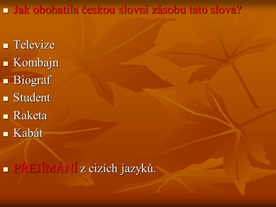 Jak obohatila českou slovní zásobu tato slova. Jak obohatila českou slovní zásobu tato slova.