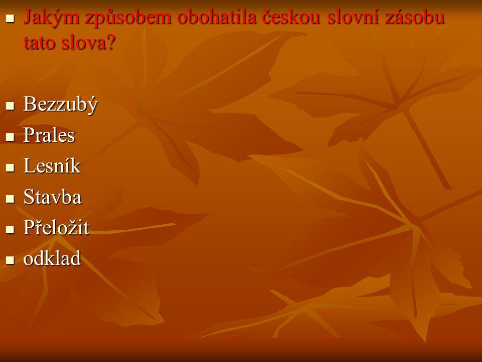 Jakým způsobem obohatila českou slovní zásobu tato slova.