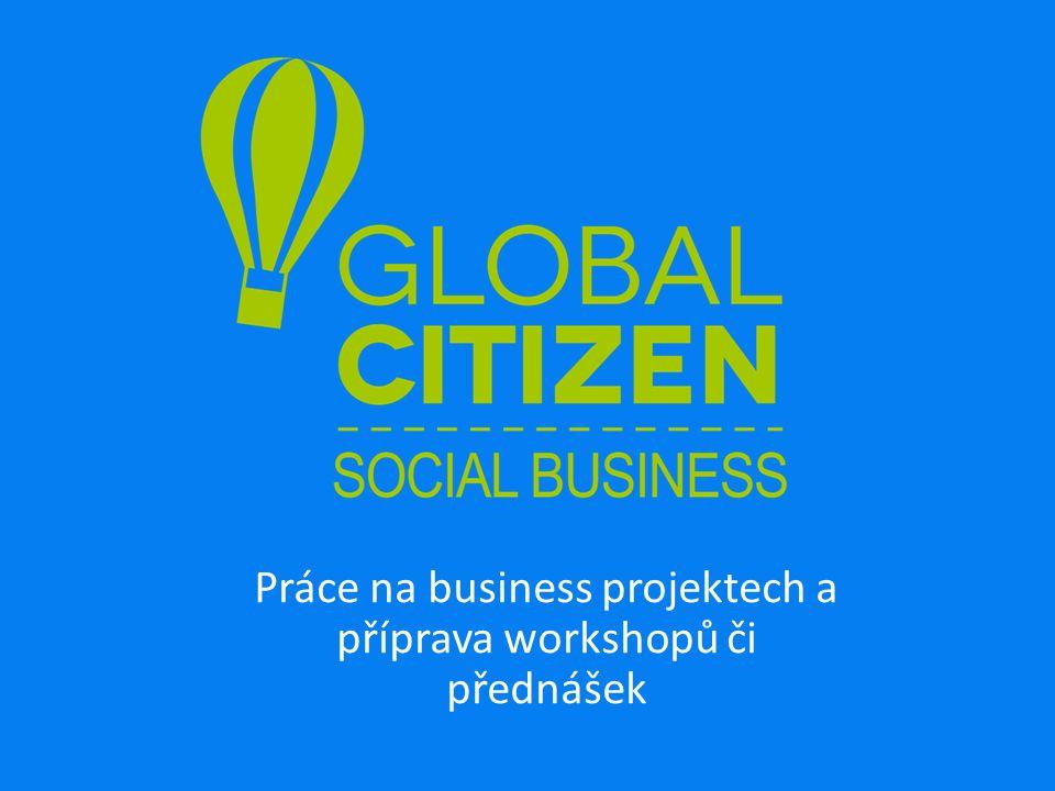 Práce na business projektech a příprava workshopů či přednášek