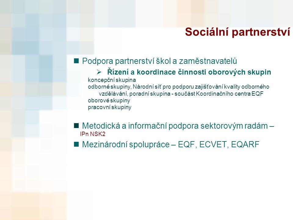 Sociální partnerství Podpora partnerství škol a zaměstnavatelů  Řízení a koordinace činnosti oborových skupin koncepční skupina odborné skupiny, Národní síť pro podporu zajišťování kvality odborného vzdělávání, poradní skupina - součást Koordinačního centra EQF oborové skupiny pracovní skupiny Metodická a informační podpora sektorovým radám – IPn NSK2 Mezinárodní spolupráce – EQF, ECVET, EQARF