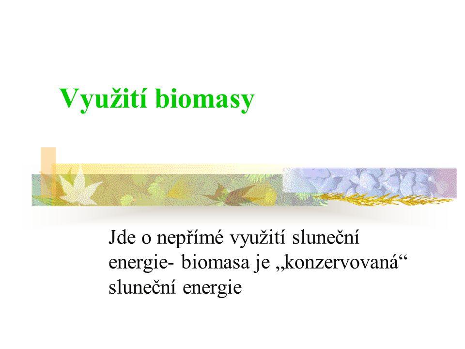 """Jde o nepřímé využití sluneční energie- biomasa je """"konzervovaná"""" sluneční energie"""