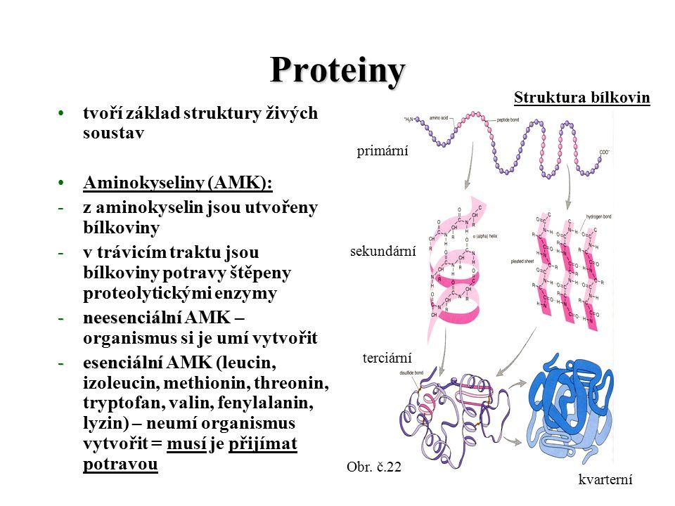 Proteiny tvoří základ struktury živých soustav Aminokyseliny (AMK): -z aminokyselin jsou utvořeny bílkoviny -v trávicím traktu jsou bílkoviny potravy štěpeny proteolytickými enzymy -neesenciální -neesenciální AMK – organismus si je umí vytvořit -esenciální -esenciální AMK (leucin, izoleucin, methionin, threonin, tryptofan, valin, fenylalanin, lyzin) – neumí organismus vytvořit = musí je přijímat potravou Obr.
