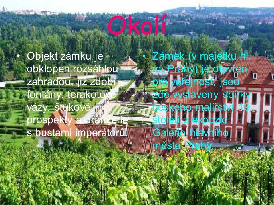 Okolí Objekt zámku je obklopen rozsáhlou zahradou, již zdobí fontány, terakotové vázy, štukové prospekty a oranžérie s bustami imperátorů. Zámek (v ma
