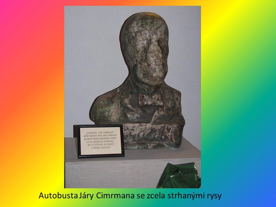 Autobusta Járy Cimrmana se zcela strhanými rysy