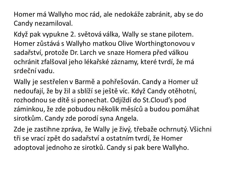 Homer má Wallyho moc rád, ale nedokáže zabránit, aby se do Candy nezamiloval. Když pak vypukne 2. světová válka, Wally se stane pilotem. Homer zůstává