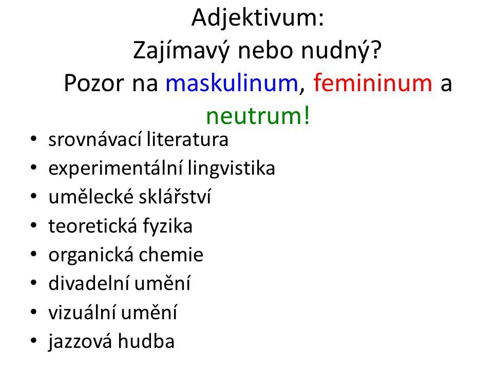 Adjektivum: Zajímavý nebo nudný. Pozor na maskulinum, femininum a neutrum.