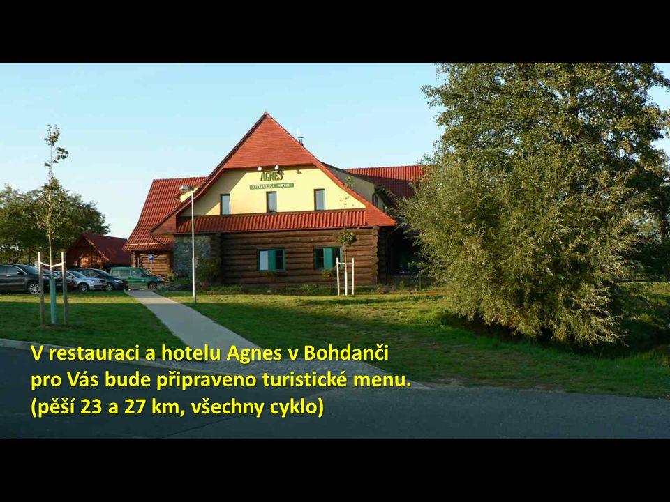 V restauraci a hotelu Agnes v Bohdanči pro Vás bude připraveno turistické menu.