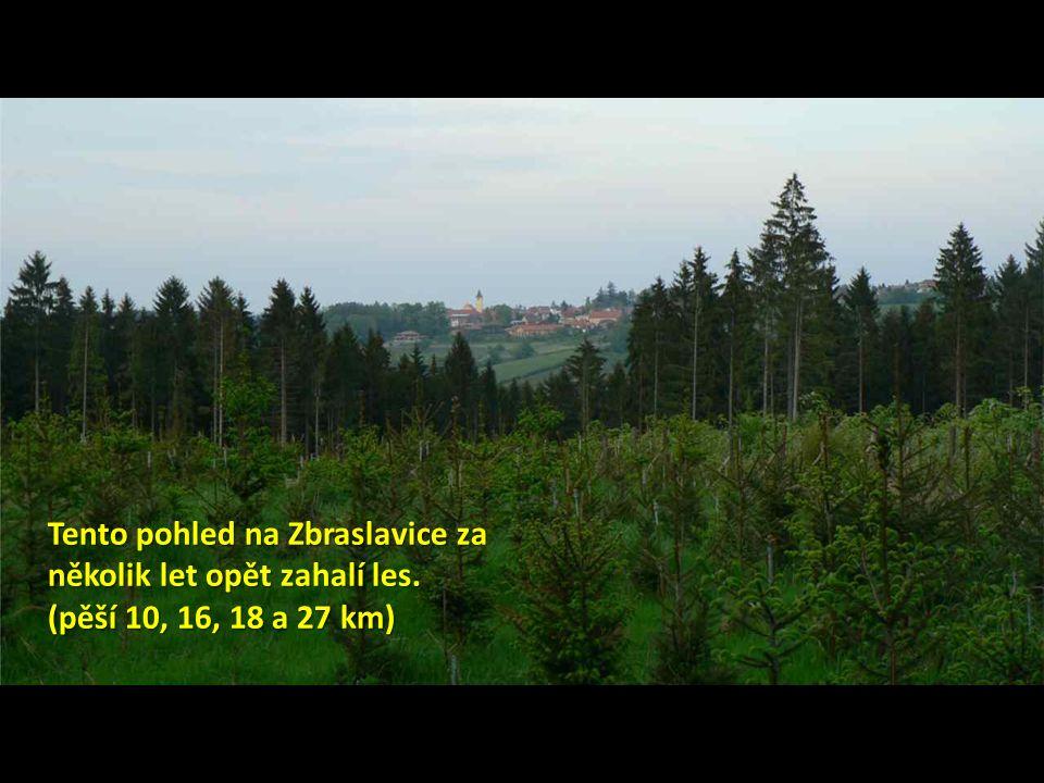 Tento pohled na Zbraslavice za několik let opět zahalí les. (pěší 10, 16, 18 a 27 km)