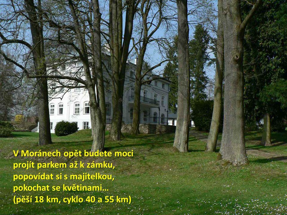 V Moránech opět budete moci projít parkem až k zámku, popovídat si s majitelkou, pokochat se květinami… (pěší 18 km, cyklo 40 a 55 km)