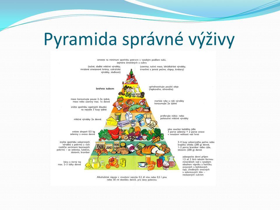 Pyramida správné výživy