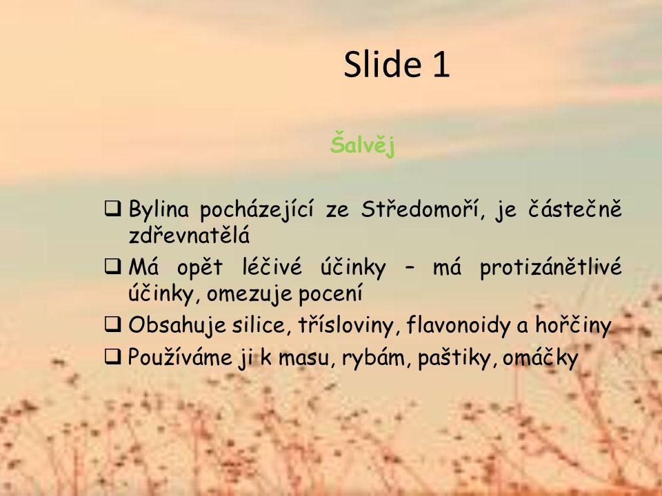Slide 1 Šalvěj  Bylina pocházející ze Středomoří, je částečně zdřevnatělá  Má opět léčivé účinky – má protizánětlivé účinky, omezuje pocení  Obsahuje silice, třísloviny, flavonoidy a hořčiny  Používáme ji k masu, rybám, paštiky, omáčky