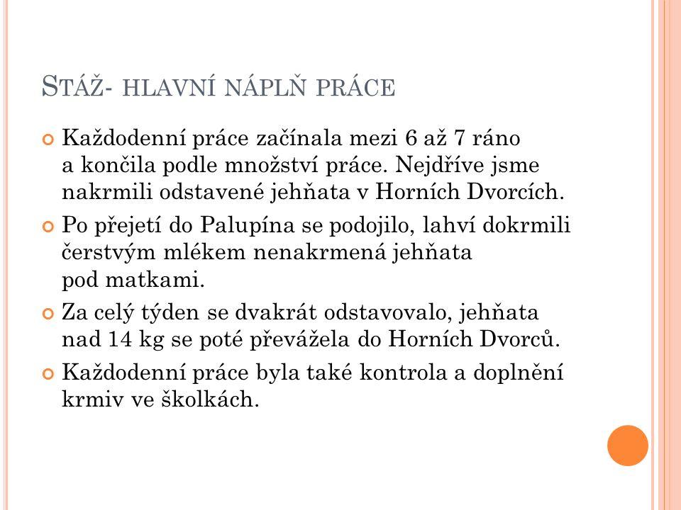 S TÁŽ - HLAVNÍ NÁPLŇ PRÁCE Každodenní práce začínala mezi 6 až 7 ráno a končila podle množství práce.