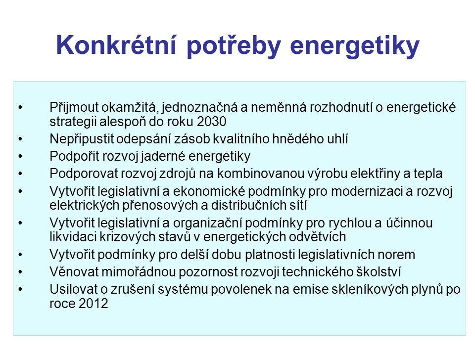 Konkrétní potřeby energetiky Přijmout okamžitá, jednoznačná a neměnná rozhodnutí o energetické strategii alespoň do roku 2030 Nepřipustit odepsání zásob kvalitního hnědého uhlí Podpořit rozvoj jaderné energetiky Podporovat rozvoj zdrojů na kombinovanou výrobu elektřiny a tepla Vytvořit legislativní a ekonomické podmínky pro modernizaci a rozvoj elektrických přenosových a distribučních sítí Vytvořit legislativní a organizační podmínky pro rychlou a účinnou likvidaci krizových stavů v energetických odvětvích Vytvořit podmínky pro delší dobu platnosti legislativních norem Věnovat mimořádnou pozornost rozvoji technického školství Usilovat o zrušení systému povolenek na emise skleníkových plynů po roce 2012