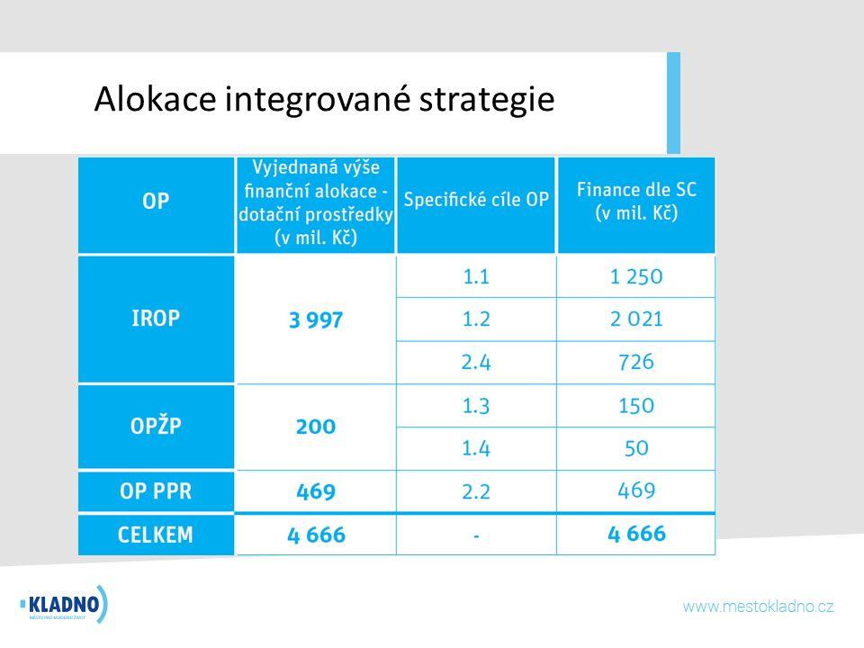 Alokace integrované strategie
