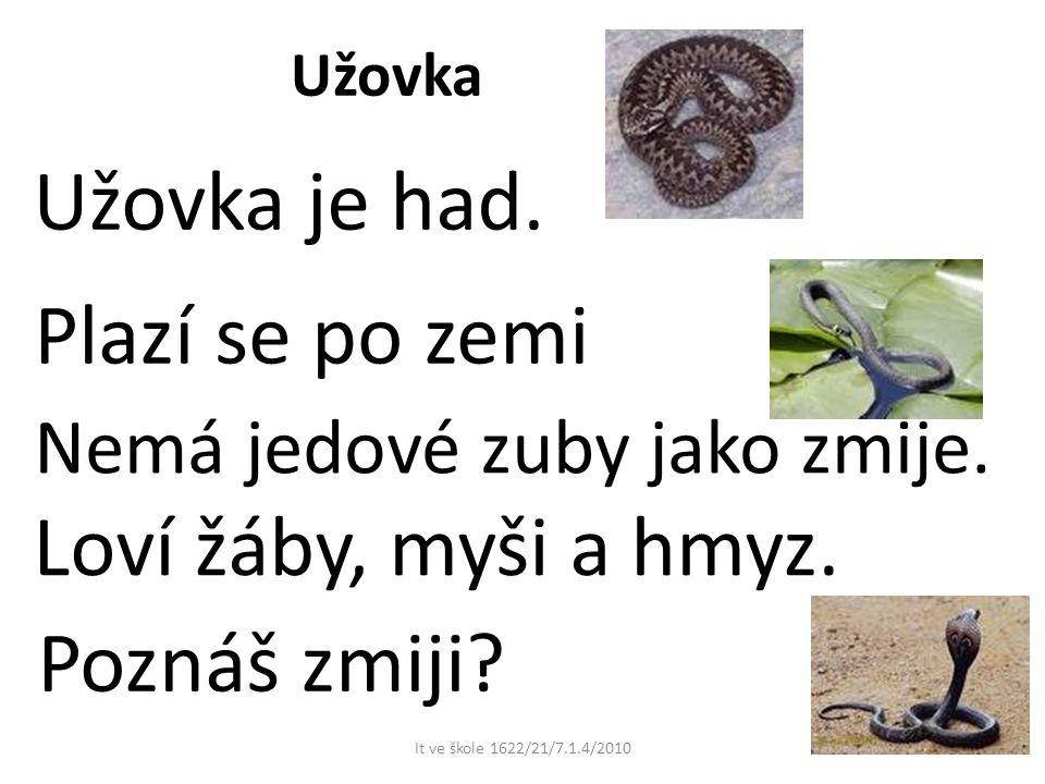 Žába Žába žije u vody.Umí plavat. Po zemi skáče. Živí se hmyzem a červy.