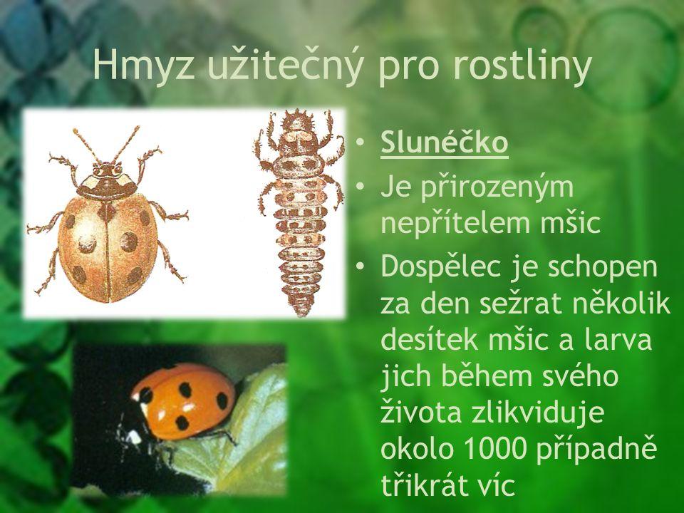Hmyz užitečný pro rostliny Slunéčko Je přirozeným nepřítelem mšic Dospělec je schopen za den sežrat několik desítek mšic a larva jich během svého života zlikviduje okolo 1000 případně třikrát víc