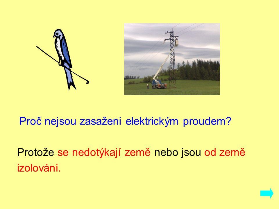 Proč nejsou zasaženi elektrickým proudem? Protože se nedotýkají země nebo jsou od země izolováni.