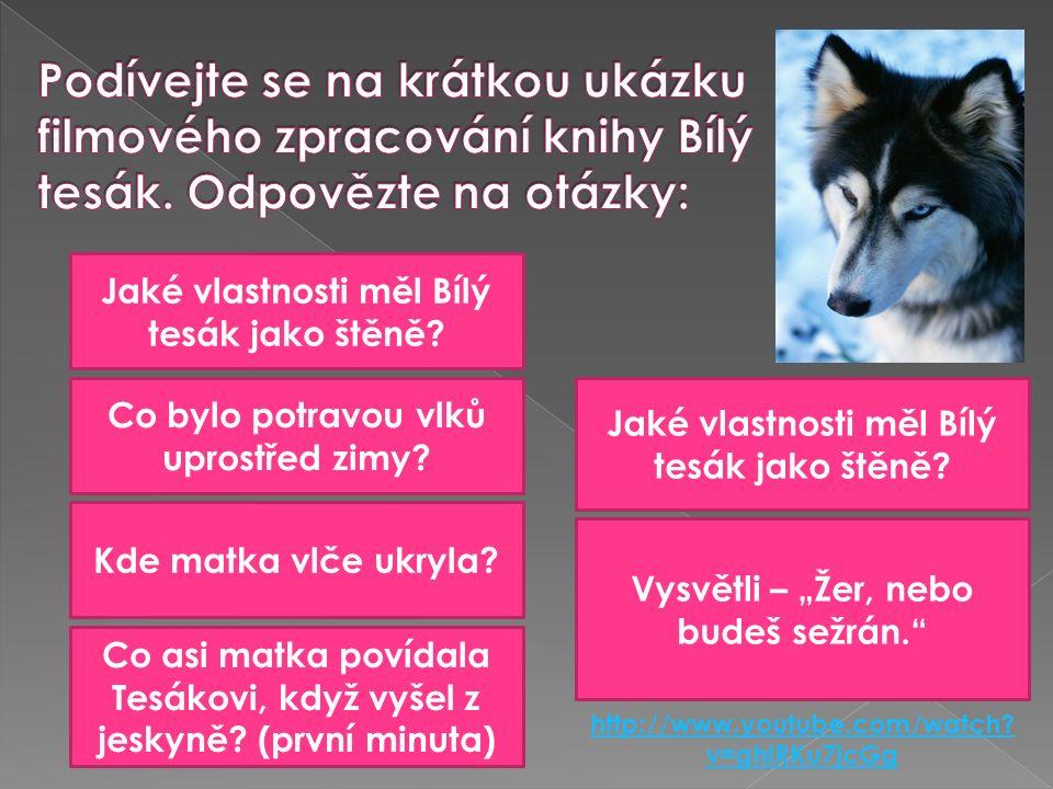 http://www.youtube.com/watch. v=ghlRKu7jcGg Jaké vlastnosti měl Bílý tesák jako štěně.