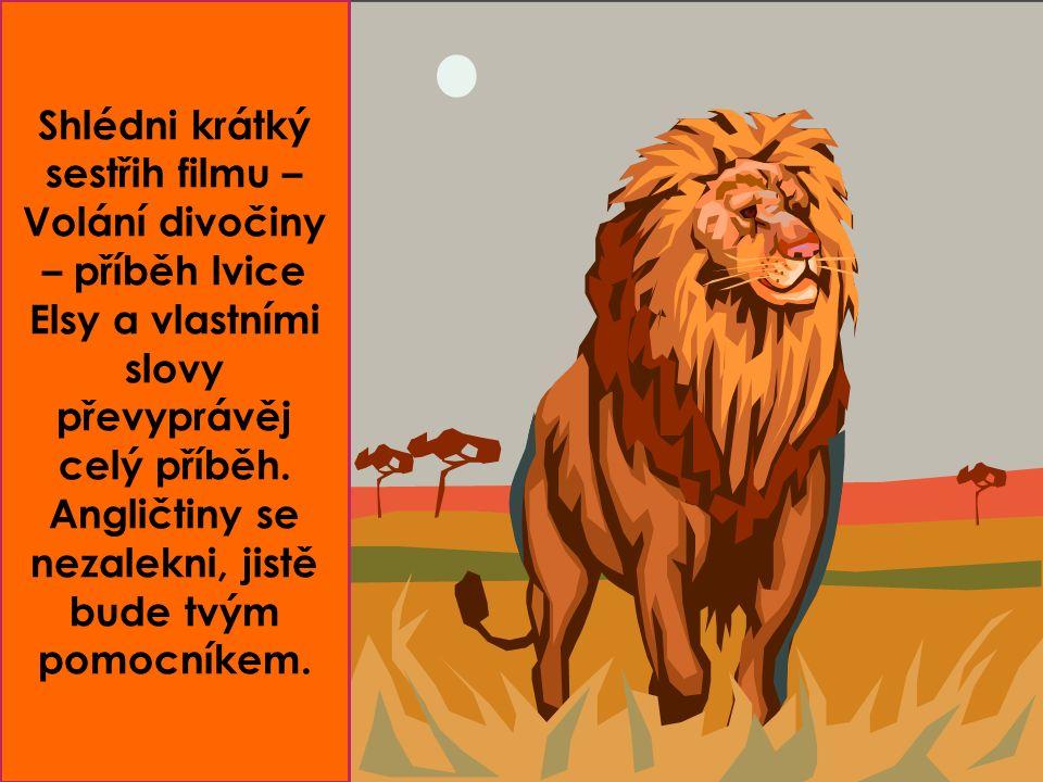 Shlédni krátký sestřih filmu – Volání divočiny – příběh lvice Elsy a vlastními slovy převyprávěj celý příběh.