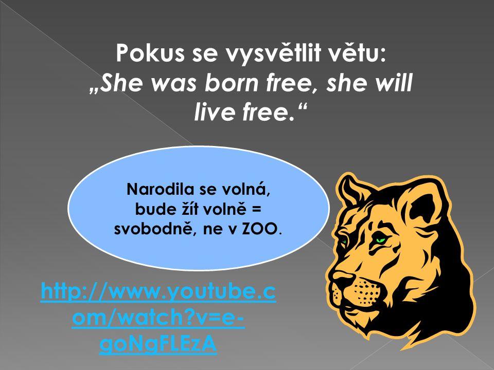 """http://www.youtube.c om/watch v=e- goNgFLEzA Pokus se vysvětlit větu: """"She was born free, she will live free. Narodila se volná, bude žít volně = svobodně, ne v ZOO."""