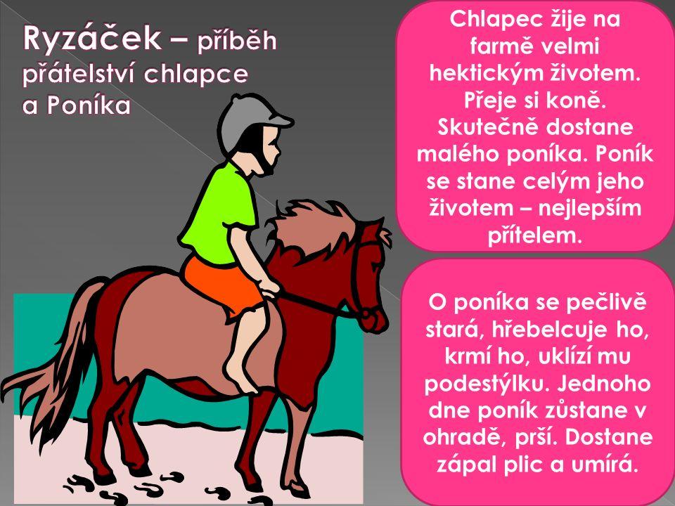 Chlapec žije na farmě velmi hektickým životem. Přeje si koně.