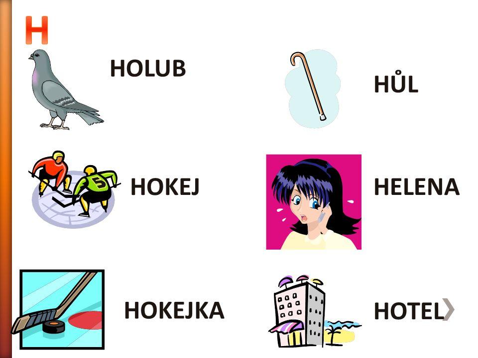 HOLUB HOTEL HELENA HŮL HOKEJKA HOKEJ