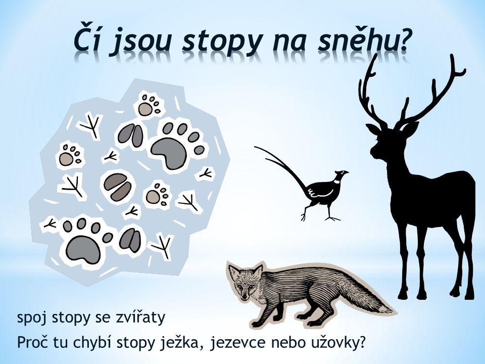spoj stopy se zvířaty Proč tu chybí stopy ježka, jezevce nebo užovky?