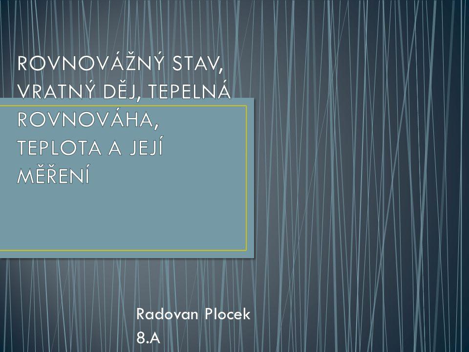 Radovan Plocek 8.A