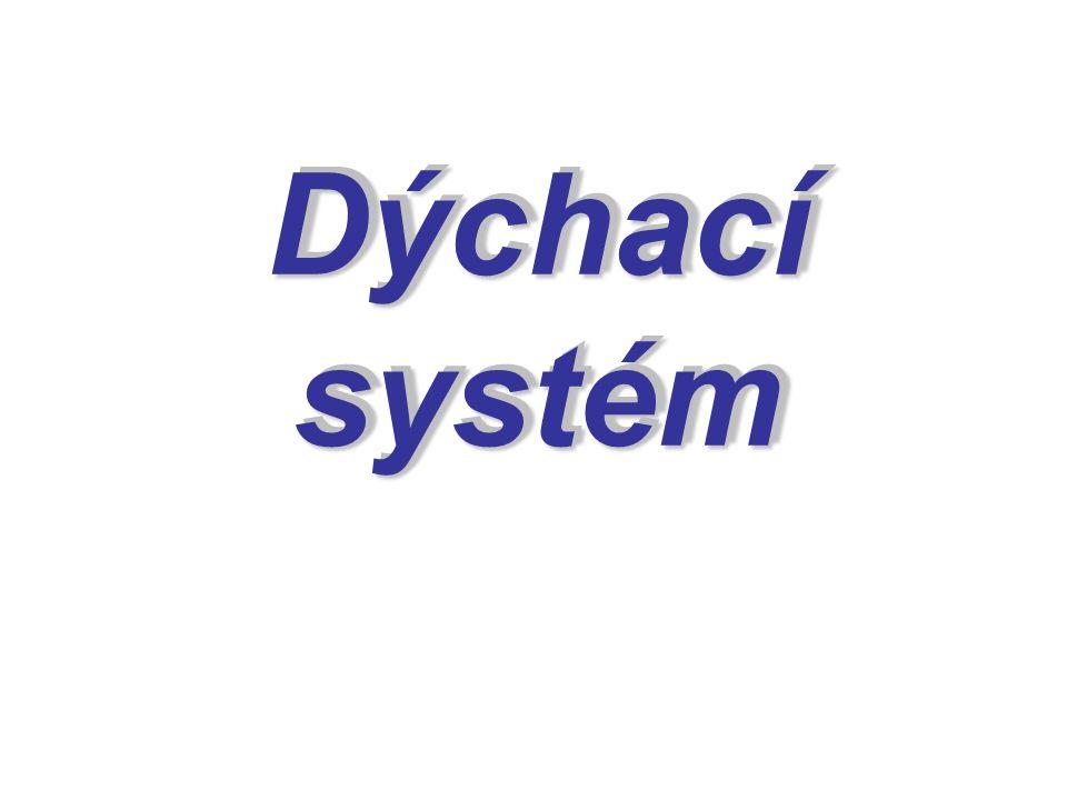 Dýchací systém Dýchací systém