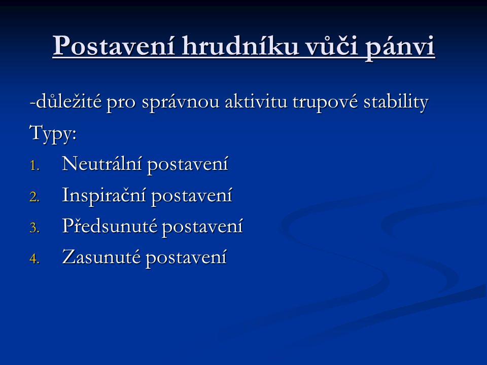 Postavení hrudníku vůči pánvi -důležité pro správnou aktivitu trupové stability Typy: 1.