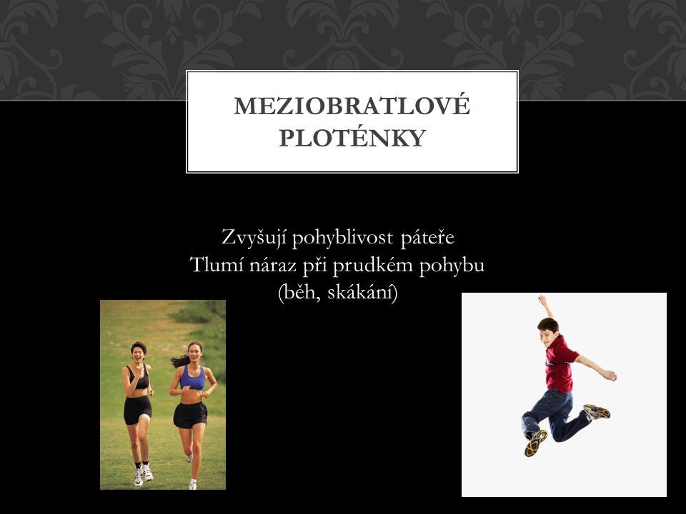 MEZIOBRATLOVÉ PLOTÉNKY Zvyšují pohyblivost páteře Tlumí náraz při prudkém pohybu (běh, skákání)