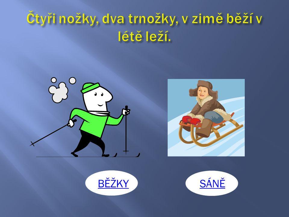 MRÁZ TESAŘ