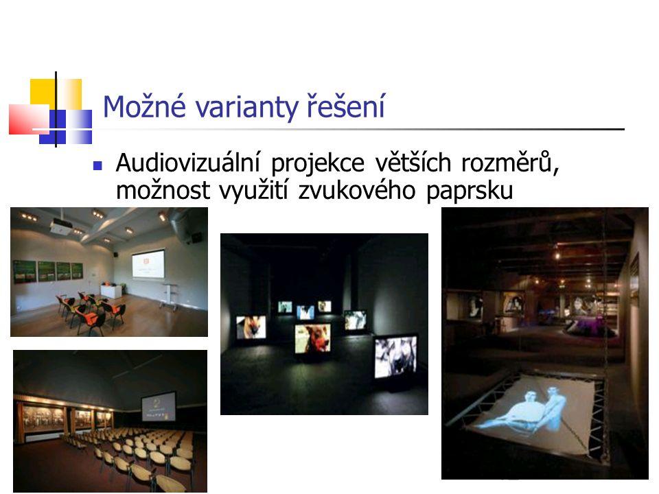 12 Možné varianty řešení Audiovizuální projekce větších rozměrů, možnost využití zvukového paprsku