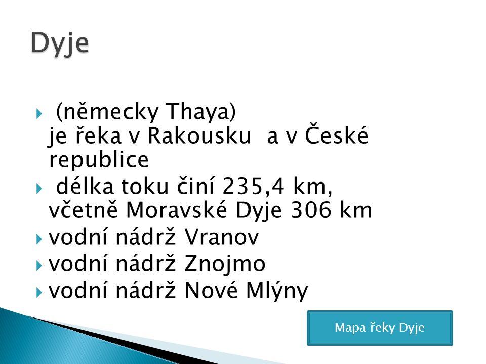  (německy Thaya) je řeka v Rakousku a v České republice  délka toku činí 235,4 km, včetně Moravské Dyje 306 km  vodní nádrž Vranov  vodní nádrž Znojmo  vodní nádrž Nové Mlýny Mapa řeky Dyje