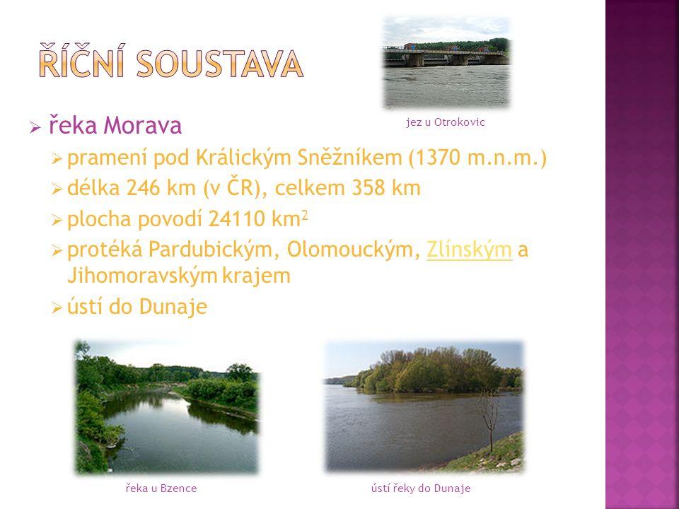  řeka Morava  pramení pod Králickým Sněžníkem (1370 m.n.m.)  délka 246 km (v ČR), celkem 358 km  plocha povodí 24110 km 2  protéká Pardubickým, Olomouckým, Zlínským a Jihomoravským krajemZlínským  ústí do Dunaje řeka u Bzenceústí řeky do Dunaje jez u Otrokovic