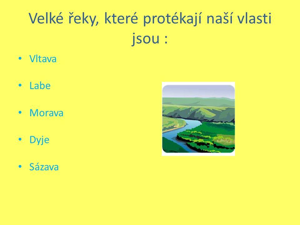 Velké řeky, které protékají naší vlasti jsou : Vltava Labe Morava Dyje Sázava