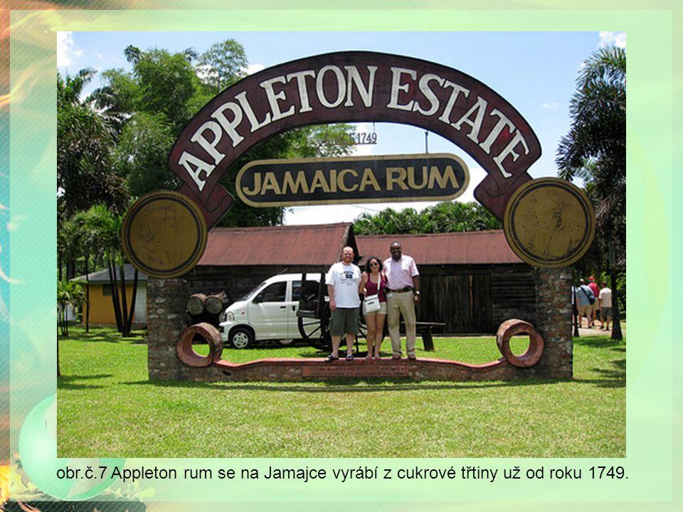 obr.č.7 Appleton rum se na Jamajce vyrábí z cukrové třtiny už od roku 1749.