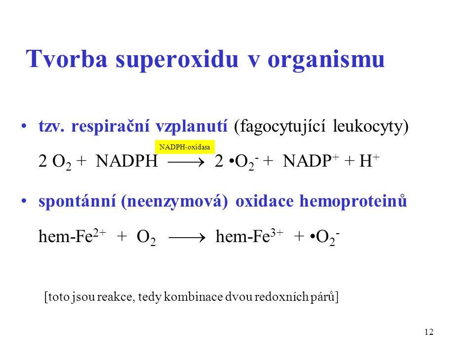 12 Tvorba superoxidu v organismu tzv.