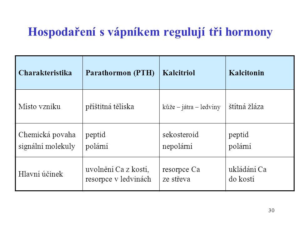 30 CharakteristikaParathormon (PTH)KalcitriolKalcitonin Místo vznikupříštitná tělíska kůže – játra – ledviny štítná žláza Chemická povaha signální molekuly peptid polární sekosteroid nepolární peptid polární Hlavní účinek uvolnění Ca z kostí, resorpce v ledvinách resorpce Ca ze střeva ukládání Ca do kostí Hospodaření s vápníkem regulují tři hormony